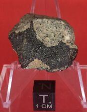 HED Howardite 10.702g Crusted End Cut Unclassified by Meteorite Men Steve
