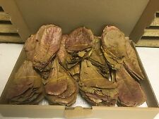 200 NANO Seemandelbaumblätter ca. (=200 Gramm) Catappa Leaves Wasseraufbereitung
