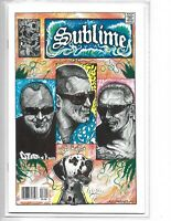 Sublime #1 // Acme comics // Rock and Roll Biographies