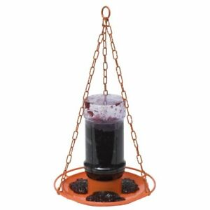 Perky-Pet 253 Oriole Jelly Wild Bird Feeder