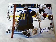 St. Louis Blues Jaroslav Halak Signed 11x14 Photo Auto