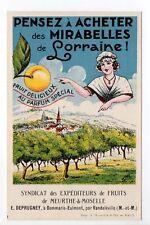 DOMMARIE-EULMONT Meurthe et moselle CPA 54 MIRABELLES LORRAINE Syndicat Fruits
