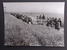 Photo ancienne BRAUD moissonneuse batteuse A2080 tractor tracteur Traktor 4