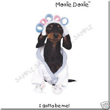 MOXIE-DOXIE VERY UNIQUE DACHSHUND GREETING CARDS SET 1
