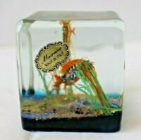 Vtg Murano Hand Blown Art Glass Fish Ocean Aquarium Paperweight Cube Italy Stick