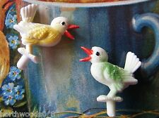 SINGING  BIRDS COLORS TWO  PLASTIC GERMAN TINY MINATURE DIORAMA  CRAFT DOLLHOUSE