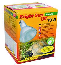 uva uvb lampen für schildkröten