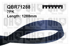VW GOLF Mk3 2.8 Multi V Drive Belt 92 to 97 AAA QH VOLKSWAGEN Quality Guaranteed