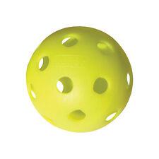 Indoor PickleBall