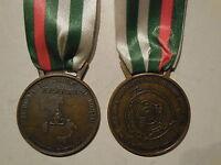 medaglia di benemerenza per il terremoto Umbria Marche 1997 protezione Civile