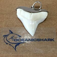 B23 28MM BULL SHARK TOOTH U WILL GET EXACT ITEM IN PIC FATHERS DAY GIFT PRESENT