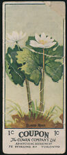 1924 V20 Cowan Candy Co WILD FLOWERS OF CANADA (w/ Coupon) -#1 Blood Root