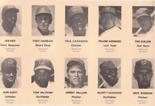 1971 Washington Senators Traffice Safety Panel 46 YEARS OLD