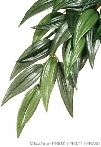 EXO TERRA JUNGLE PLANT RUSCUS LARGE SILK