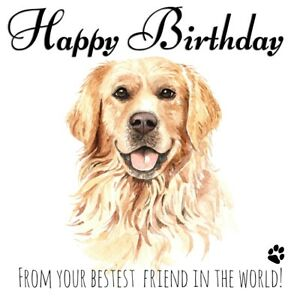 PERSONALISED BIRTHDAY CARD FROM THE DOG - GOLDEN RETRIEVER PET LOVER BEST FRIEND