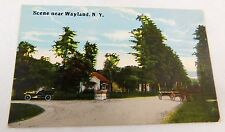Circa 1910-20 Scene Near Wayland, New York, Car Wagon Horses Postcard P31