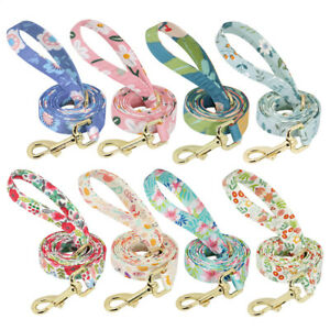 1.5M Nylon Dog Lead Strong Pet Cat Puppy Walking Training Lead for Large Dogs