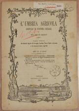 L'UMBRIA AGRICOLA 15 30 NOVEMBRE 1889 VENDEMMIA ENOLOGIA VINI VITICOLTURA WINES