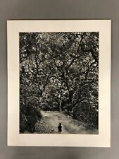 "Wynn Bullock ""Child On Forest Road"" 1958 Unframed & Matted Photo Print 22"" X 18"""