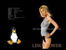 UBUNTU 16.04.1 32  BIT + LINUX MINT 32 BIT OS DVD LOT OF 2 + BONUS APP. DISC