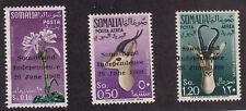 Somalia - 1960 - SC 242, C68-69 - LH/NH - Complete - 242 NH