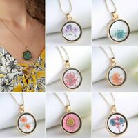 Women Circle Dried Flowers Sliver Plated Bead Chain Pendant Necklace Jewelry Hot
