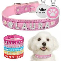 Personalized Dog Cat Collar Custom Name ID Tag Puppy Kitten Charns Leather Bling