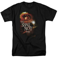 Lord of the Rings YOU SHALL NOT PASS Licensed Adult T-Shirt All Sizes