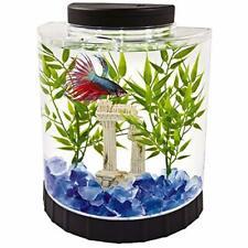 New listing Tetra Led Half Moon Betta Aquarium, Betta Fish Tank (29049)