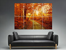 Automne Nature Paysage Forêt Rouge Couché soleil Wall Art Poster A0 Large print