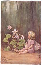 1944 original vintage WOOD SORREL FAIRY Mary Barker print
