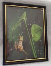 """Frog Picture 8.25"""" x 10.25"""" Green Red Black in Plastic Frame"""