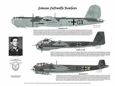 Ju-188, Do-217, He-177, Signed by Pilot, Aviation Art, Ernie Boyette