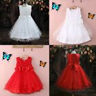 NWT Kids Girls Pearl Lace Bows Formal Party Wedding Flower Girl Dress White/Red