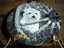 West Highland Terriers Wild Wild Westie Paul Doyle White Puppy Dog Danbury Plate