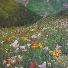 Puzzle Montagne fait main mountain handmade art déco IN 1968 Mirecourt Menton FR