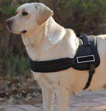 Unbranded Bulldog Dog Supplies