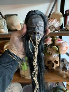 Cabinet Of Curiosities Oddities Head Reduced Tsantsa Jivaro Shrunken Head