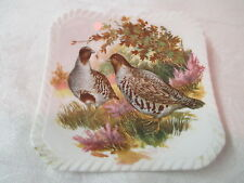 Vintage England Royal Adderley bone china square Coaster ADD102 Grouse Game Bird
