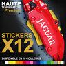 Stickers autocollants adhésifs pour étrier de frein - JAGUAR XE XF XJ