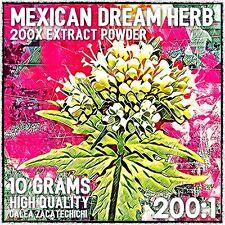 Mexican Dream Herb (calea Zacatechichi) 10 Grams