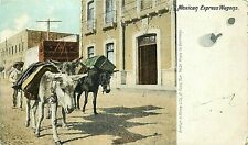 Udbk Mexico Postcard M348 mexican Express Wagons Man with Donkeys Mules Burros