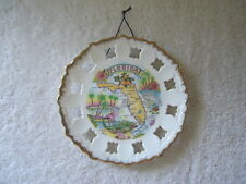 Vintage American Gift Collector Series Florida Wall Hanging Collectors Plate