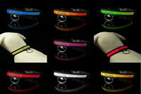 XS to X Large LED Dog Collar Light Up Adjustable Nylon Flashing Night Pet Safety