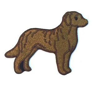 Chesapeake Bay Retriever Iron On Embroidered Patch