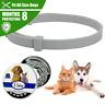 Collar Antipulgas Garrapatas Para Perros Proteccion GARANTIZADA Durante 8 Meses