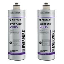 Everpure OCS2 Water Filtration Cartridge - 2 Pack