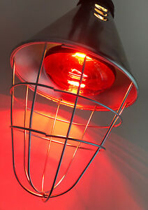 Professional Infared Heat Lamp with 250w Bulb for Whelping, Poultry