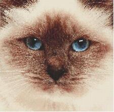 New Birman Siamese Cat Close Up Cross Stitch Pattern By Crossstitchmania