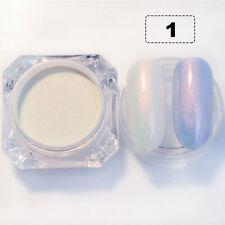 Nail Art Glitter Powder Dust For UV GEL Acrylic Powder Decoration Tips Silver